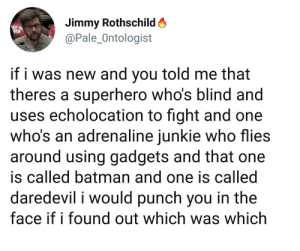 Batman, Superhero, and Daredevil: Jimmy Rothschild A  @Pale_Ontologist  if i was new and you told me that  theres a superhero who's blind and  uses echolocation to fight and one  who's an adrenaline iunkie who flies  around using gadgets and that one  is called batman and one is called  daredevil i would punch you in the  face if i found out which was which