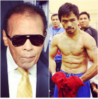 Ali, Mayweather, and Muhammad Ali: Jink Muhammad Ali is all TeamPacquiao for the Mayweather fight.