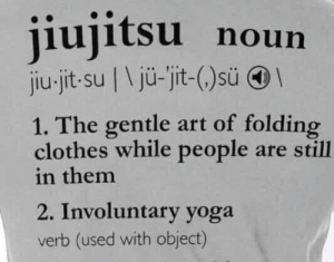 Clothes, Yoga, and Art: jiujitsu noun  jiu-jit-su | \jü-jit-()sü  1. The gentle art of folding  clothes while people are still  in them  2. Involuntary yoga  verb (used with object)