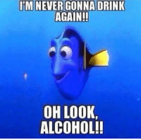 JM NEVER GONNA DRINK  AGAIN!!  OH LOOK,  ALCOHOL!!