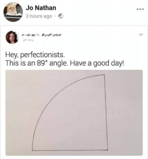 Memes, Good, and 🤖: Jo Nathan  3 hours ago  ' t  Hey, perfectionists  This is an 89° angle. Have a good day!