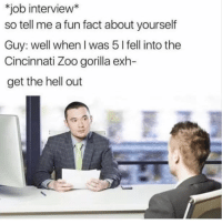 "Job Interview, Memes, and Hell: job interview*  so tell me a fun fact about yourself  Guy: well when I was 5 l fell into the  Cincinnati Zoo gorilla exh-  get the hell out <p>Fun fact via /r/memes <a href=""https://ift.tt/2pPUZhc"">https://ift.tt/2pPUZhc</a></p>"