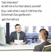 <p>Dead Meme</p>: job interview*  so tell me a fun fact about yourself  Guy: well when I was 5 l fell into the  Cincinnati Zoo gorilla exh  get the hell out <p>Dead Meme</p>
