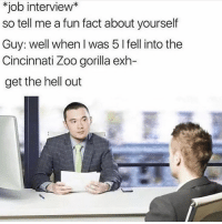 Job Interview, Dank Memes, and Hell: *job interview*  so tell me a fun fact about yourself  Guy: well when I was 5 I fell into the  Cincinnati Zoo gorilla exh-  get the hell out F 😪