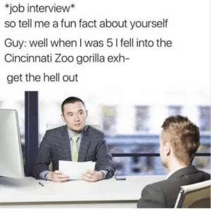 Fun fact (i.imgur.com): job interview*  so tell me a fun fact about yourself  Guy: well when I was 5 l fell into the  Cincinnati Zoo gorilla exh-  get the hell out Fun fact (i.imgur.com)
