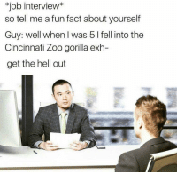 LMFAO CRYING: job interview  so tell me a fun fact about yourself  Guy: well when was 5 l fell into the  Cincinnati Zoo gorilla exh-  get the hell out LMFAO CRYING