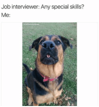 Job Interview, Memes, and 🤖: Job interviewer: Any special skills?  Me  Shitheadsteve You're hired! (@shitheadsteve)