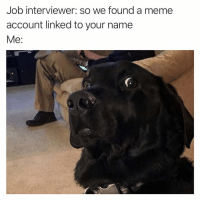 Meme, Dank Memes, and Job: Job interviewer: so we found a meme  account linked to your name  Me: ThNks I'll look elsewhere