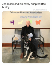 The greatest Vice President in history (and future President of the United States) and his newly adopted little buddy. <— fixed 😊😂😂: Joe Biden and his newly adopted little  buddy.  @DrSmashlove  Delaware Humane Association  Making friends for life The greatest Vice President in history (and future President of the United States) and his newly adopted little buddy. <— fixed 😊😂😂