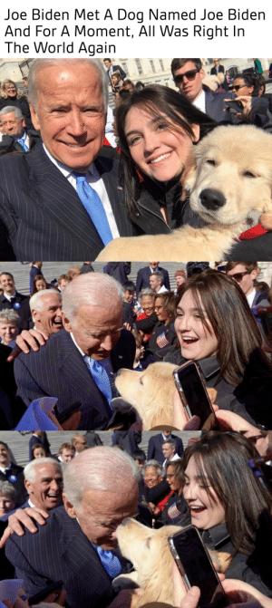 "joebidensanonymous:  Biden is a 4-month-old Golden Retriever named after the former vice president.His owner Sidney took him to the Capitol to see Joe Biden give a speech.""As soon as Joe Biden saw the dog during his speech, he pointed at the dog, and then started like cracking up. Right towards the end, I kind of signaled him, and he gave me a wink to come over,"" Sydney said. ""When I told him his name was Biden, his face lit up and he started kissing the dog, which is like exactly what I expected Joe Biden would do""By the way, Biden the puppy has an Instagram: Joe Biden Met A Dog Named Joe Biden  And For A Moment, All Was Right In  The World Again joebidensanonymous:  Biden is a 4-month-old Golden Retriever named after the former vice president.His owner Sidney took him to the Capitol to see Joe Biden give a speech.""As soon as Joe Biden saw the dog during his speech, he pointed at the dog, and then started like cracking up. Right towards the end, I kind of signaled him, and he gave me a wink to come over,"" Sydney said. ""When I told him his name was Biden, his face lit up and he started kissing the dog, which is like exactly what I expected Joe Biden would do""By the way, Biden the puppy has an Instagram"