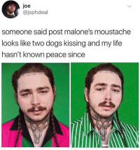 Dogs, Life, and Peace: Joe  @jsphdeal  someone said post malone's moustache  looks like two dogs kissing and my life  hasn't known peace since Can't stop staring
