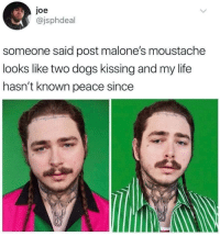 Dogs, Life, and Peace: joe  @jsphdeal  someone said post malone's moustache  looks like two dogs kissing and my life  hasn't known peace since