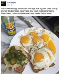 Joe Rogan: Joe Rogan  The mother of all egg sandwiches: fried eggs from my yard, sunny side up,  smoked Gouda cheese, mayonnaise, sour kraut, sliced jalenenos and  @elyucateco hotsauce habanero sauce on toasted Ezekiel bread.  HOT SAU  CHILE HABA