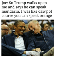 Memes, 🤖, and Joe: Joe: So Trump Walks up to  me and says he can speak  mandarin. I was like dawg of  course you can speak orange  atoodankmyguy @toodankmyguy can supply you with all your dank meme needs... I love his shit so much I'm gonna post him again