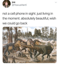 Beautiful, Memes, and Phone: joe  @TravusHertl  not a cell phone in sight. just living in  the moment. absolutely beautiful, wish  we could go back Amazing