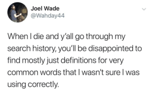 Meirl: Joel Wade  @Wahday44  When I die and y'all go through my  search history, you'll be disappointed to  find mostly just definitions for very  common words that I wasn't sure I was  using correctly. Meirl