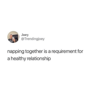 Completely agree 🙌😴: Joey  @Trendingjoey  napping together is a requirement for  a healthy relationship Completely agree 🙌😴