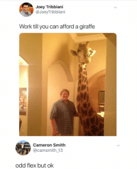 Flexing, Ironic, and Joey Tribbiani: Joey Tribbiani  @JoeyTribbiiani  Work till you can afford a giraffe  Cameron Smith  @camsmith_13  odd flex but ok
