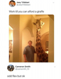 Flexing, Joey Tribbiani, and Work: Joey Tribbiani  @JoeyTribbiiani  Work till you can afford a giraffe  3  Cameron Smith  @camsmith 13  odd flex but ok