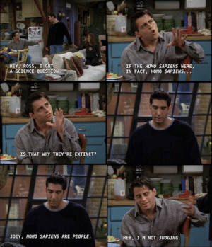 Joey Tribbiani ladies and gents: Joey Tribbiani ladies and gents