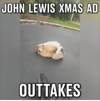 Dank, Quite, and 🤖: JOHN LEWIS XMAS AD  OUTTAKES Some dogs didn't quite make it past the audition process for the latest John Lewis Christmas ad...