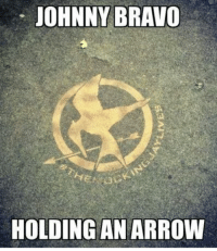 Johnny Bravo, Memes, and Bravo: JOHNNY BRAVO  HOLDING AN ARROW