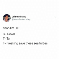Dtf, Yeah, and Help: Johnny Mayo  @WanderlustMayo  Yeah I'm DTF  D- Down  T- To  F- Freaking save these sea turtles Want to help but don't where to begin? Easy! Say BYE to straws! TheLastStraw 🐢