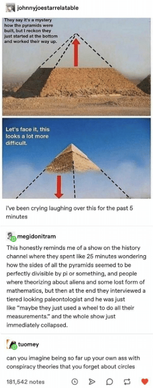 ": johnnyjoestarrelatable  They say it's a mystery  how the pyramids were  built, but I reckon they  just started at the bottom  and worked their way up.  Let's face it, this  looks a lot more  difficult  i've been crying laughing over this for the past 5  minutes  megidonitram  This honestly reminds me of a show on the history  channel where they spent like 25 minutes wondering  how the sides of all the pyramids seemed to be  perfectly divisible by pi or something, and people  where theorizing about aliens and some lost form of  mathematics, but then at the end they interviewed a  tiered looking paleontologist and he was just  like ""maybe they just used a wheel to do all their  measurements."" and the whole show just  immediately collapsed  tuomey  can you imagine being so far up your own ass with  conspiracy theories that you forget about circles  181,542 notes"
