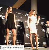 Memes, Ufc, and Bank: JOHNSON  CORh  JOHN  APR  NPA PE  IER  J ON2  UFN  Bank Center  SAT  ONE  R-VIEW  CORMIER  L FC  JOHN  SON 2  APR8 SAI  teamalphamalemma l  CORNW  2IO  N2  CORMIER  4 C  JOHNSON.  IO APR BSAT Fight is back on 🙌🏾 @cynthia.calvillo @pearlgonzalez NYC came to their senses @ufc
