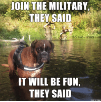 Poor thing.: JOIN THE MILITARY  THEY SAID  IT WILL BE FUN,  THEY SAID  made on inngur Poor thing.