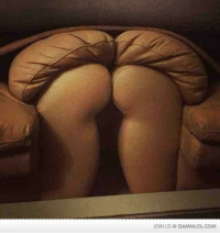 Funny, Lol, and Memes: JOIN US DAMNLOLCOM I have a strange attraction to my new couch...