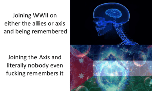 Fucking, History, and Only One: Joining WWII on  either the allies or axis  and being remembered  Joining the Axis and  literally nobody even  fucking remembers it I seriously can't be the only one