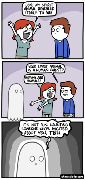 omg-images:  Spirit Animal.: JON! MY SPIRIT  ANIMAL REVEALED  ITSELF To ME!  YOUR SPIRIT ANIMAL  S A HUMAN GHOST?  HUMANS ARE  ANIMALS!  IT'S NOT FUN HAUNTING  SOMEONE WHO'S EXCITED  ABOUT YOU, TBH.  channelate.com omg-images:  Spirit Animal.