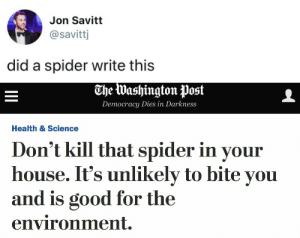 Spider, Target, and Tumblr: Jon Savitt  @savittj  did a spider write this   The Washington Post  Democracy Dies in Darkness  Health & Science  Don't kill that spider in your  house. It's unlikely to bite you  and is good for the  environment. tastefullyoffensive:  (via savittj)