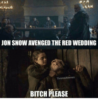 Bitch, Memes, and Jon Snow: JON SNOW AVENGED THE RED WEDDING  Thrones Memes  BITCH PLEASE https://t.co/Tq8aYAUBZe