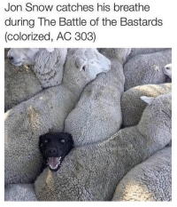 Game of Thrones, Tumblr, and Jon Snow: Jon Snow catches his breathe  during The Battle of the Bastards  (colorized, AC 303) game-of-thrones-fans:  Jon Snow at TBotB