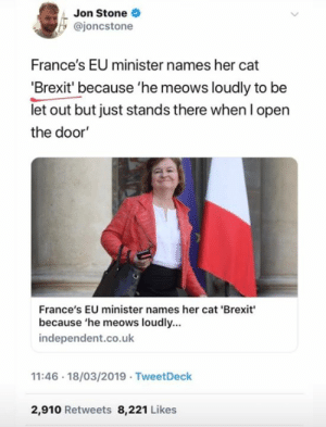Memes, French, and Brexit: Jon Stone  @joncstone  France's EU minister names her cat  'Brexit' because 'he meows loudly to be  let out but just stands there when l open  the door  France's EU minister names her cat 'Brexit  because 'he meows loudly...  independent.co.uk  11:46 18/03/2019 TweetDeck  2,910 Retweets 8,221 Likes Gotta hand it to the French on this one
