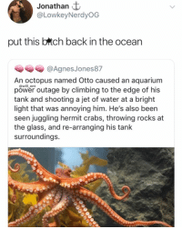 Climbing, Memes, and Aquarium: Jonathan  @LowkeyNerdyOG  put this brtch back in the ocean  @Agnes Jones87  An octopus named Otto caused an aquarium  power outage by climbing to the edge of his  tank and shooting a jet of water at a bright  light that was annoying him. He's also been  seen juggling hermit crabs, throwing rocks at  the glass, and re-arranging his tank  surroundings.  @will_ent Put him back