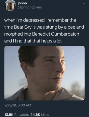 whitepeopletwitter:  Smaug in the wild: jonno  @jonnohopkins  when I'm depressed I remember the  time Bear Grylls was stung by a bee and  morphed into Benedict Cumberbatch  and I find that that helps a lot  7/22/18, 5:03 AM  13.9K Retweets 44.6K Likes whitepeopletwitter:  Smaug in the wild