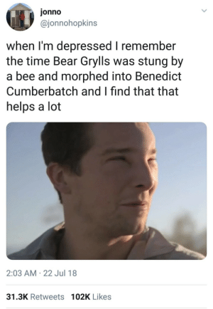 Phone Clearing Dump: jonno  @jonnohopkins  when I'm depressed I remember  the time Bear Grylls was stung by  a bee and morphed into Benedict  Cumberbatch and I find that that  helps a lot  2:03 AM · 22 Jul 18  31.3K Retweets 102K Likes Phone Clearing Dump
