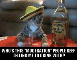 "Moderation, This, and People: Jose cuerve  ESpecial  WHO'S THIS ""MODERATION"" PEOPLE KEEP  TELLING ME TO DRINK WITH?"