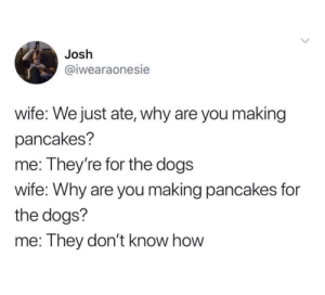 Dogs, Wife, and How: Josh  @iwearaonesie  wife: We just ate, why are you making  pancakes?  me: They're for the dogs  wife: Why are you making pancakes for  the dogs?  me: They don't know how What a great idea.Tw: iwearaonesie