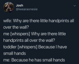 from twitter.com/iwearaonesie: Josh  @iwearaonesie  wife: Why are there little handprints all  over the wall?  me [whispers] Why are there little  handprints all over the wall?  toddler [whispers] Because I have  small hands  me: Because he has small hands from twitter.com/iwearaonesie