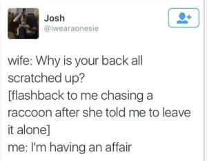Being Alone, Tumblr, and Blog: Josh  @iwearaonesie  wife: Why is your back all  scratched up?  [flashback to me chasing a  raccoon after she told me to leave  it alone]  me: I'm having an affair whitepeopletwitter:  Raccoon Fight.