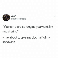 """my dog is so spoiled: Josh  @iwearaonesie  """"You can stare as long as you want, I'm  not sharing""""  me about to give my dog half of my  sandwich my dog is so spoiled"""