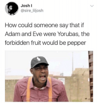 Adam and Eve, Friends, and Memes: Josh l  @sire_liljosh  How could someone say that if  Adam and Eve were Yorubas, the  forbidden fruit would be pepper 😩😭😂😂😂 Tag your Yoruba friends . . yoruba pepper KraksTv
