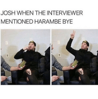 Sorry if I sound like the biggest Debbie downer wow I'll stop: JOSH WHEN THE INTERVIEWER  MENTIONED HARAMBE BYE Sorry if I sound like the biggest Debbie downer wow I'll stop