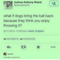 Memes, 🤖, and Leed: Joshua Anthony Brand  ajoshuabrand  what if dogs bring the ball back  because they think you enjoy  throwing it?  22/11/2014 17:09 from Leeds, England  24  RETWEETS 34  FAVORITES  legal wifi  THE REAL QUESTION My dog can't fetch he's so st00pid but I'm going to be complaining in my next like 3 captions so you guys are warned okay ~Michaela •••••••••••••••••••••••••••••••••••• TAGS TAGS TAGS TAGS TAGS tumblrtextpost tumblrposts textpost tumblr shrek instatumblr memes posts phan funnythings 😂 same funny haha loltumblr lol relatable rarepepe funnythings funnytextposts pepeislife meme funnystuff pepe food spam (follow our backup @plshelpimabackup )