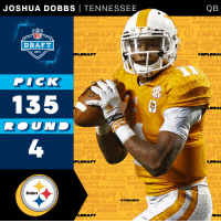 Football, Memes, and Nfl: JOSHUA DOBBS TENNESSEE  DRAFT  2017  NFL DRAFT  DICK  1335  adizer  RAFT  Steelers  STEELERS  DRAFT  QB  DRAFT  AFT  LDRA  ORAL The @Steelers select @Vol_Football QB @josh_dobbs1 with the 135th overall pick!  #NFLDraft https://t.co/Lq798ODPS2