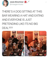 Leave him alone he had a ruff day: Josie Brechner /  avisagermusic  THERE'SA DOG SITTING AT THIS  BAR WEARING A HAT AND EATING  AND EVERYONE IS JUST  PRETENDING LIKE ITS NO BIG  DEAL???  Fries ar  Fries or Tats  ALCOHOL  Hot Do  ALCOHOL  MOL Leave him alone he had a ruff day